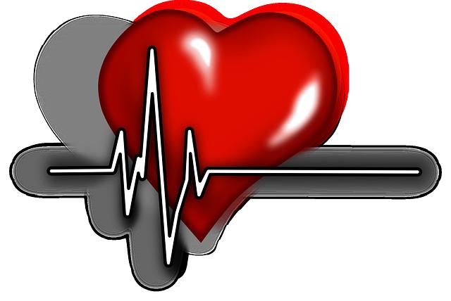 srdeční pulz.png